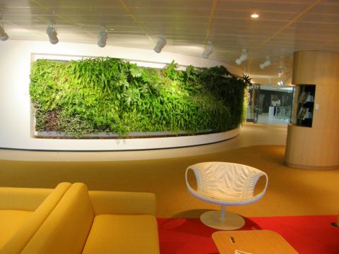室内绿化墙 (1).jpg