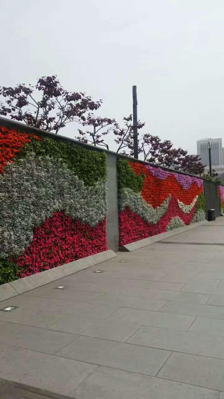 长效景观植物墙 (4).jpg