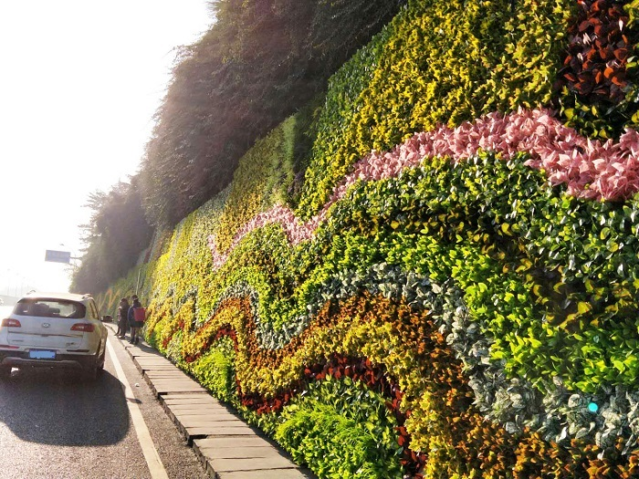 长效景观植物墙 (7).jpg