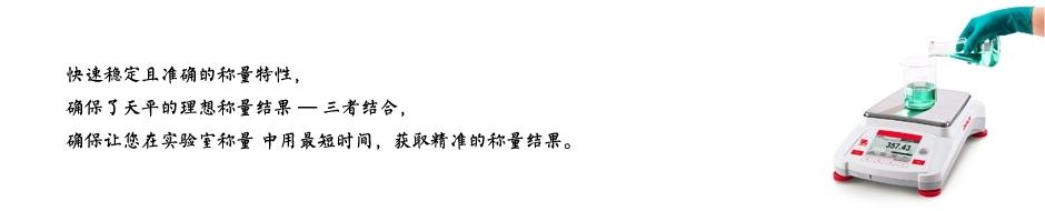 奥豪斯AX8201ZH电子天平.jpg