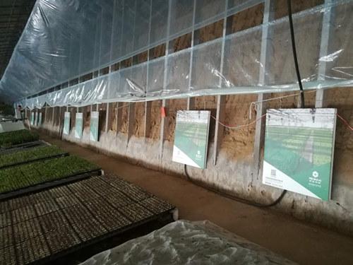 电热画温室大棚取暖-工程案例_副本.jpg